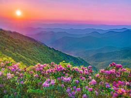 Appalachian - Paradise3.jpg