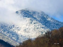 WinterTimeBlues.jpg