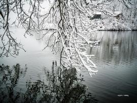 LakeJunaluskaWinterReflections4.jpg