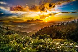 Glorious Golden Hour.jpg