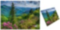 LogoOnCanvas.jpg