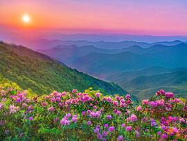 Appalachian - Paradise 2.jpg