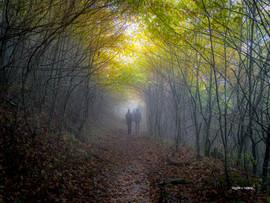 HikingThroughSmokyMountainClouds.jpg