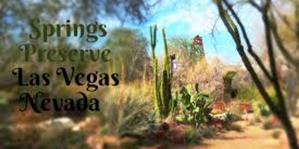 Springboard Video Series