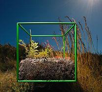 biocube.jpg