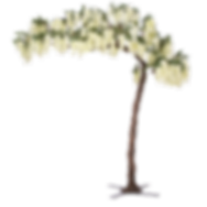 11-feet-tall-grand-arch-fake-wisteria-tr