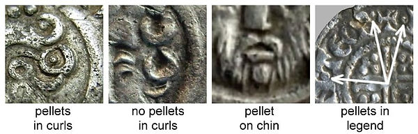 Pellet Types (with arrows).jpg