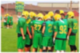 Lynden Lions football