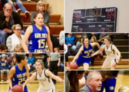 Ferndale girls basketball