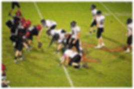 Meridian vs. Mount Baker football