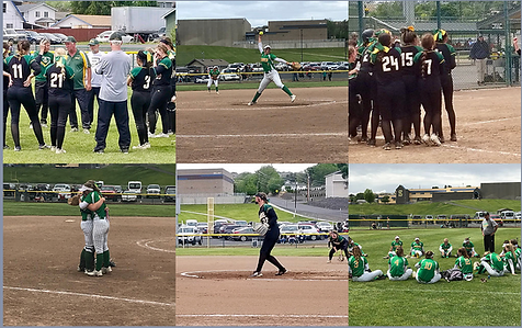 Sehome Lynden Softball.png