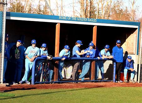 Ferndale baseball_edited.jpg