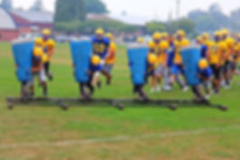 Ferndale football sled