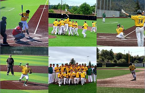 Sehome Baseball Collage.png
