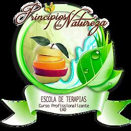 LOGO ESCOLA DE TERAPIAS.png