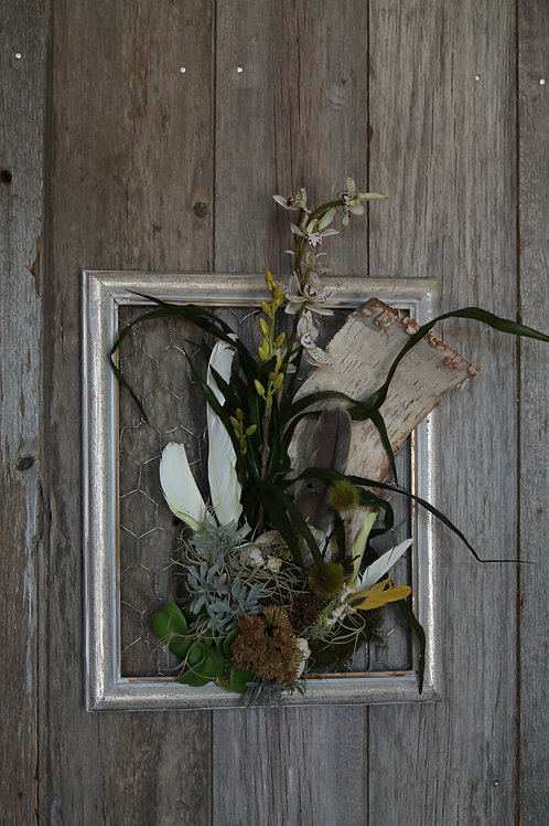 135 - Birch Bark, Succulent, Orchid