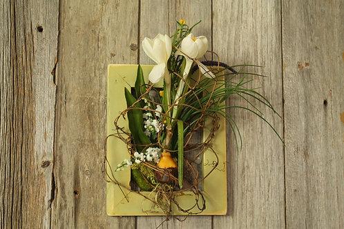 106-Spring Bulb