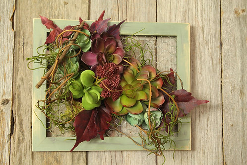 103-Green Frame Succulent