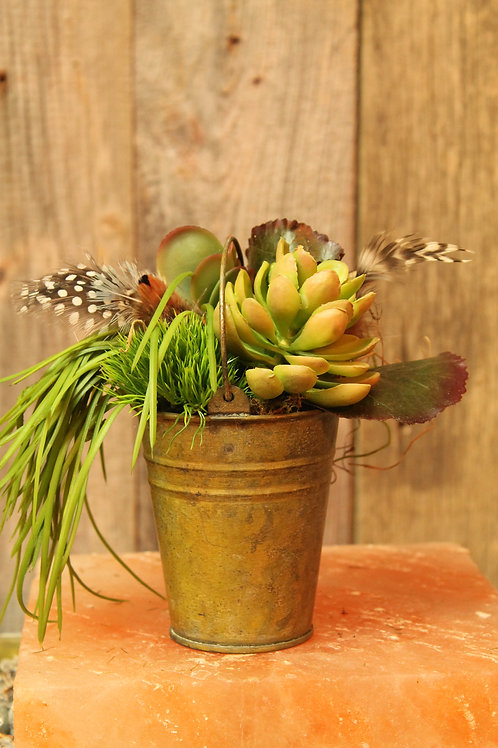 131 - Cache Pot with Succulent and grass
