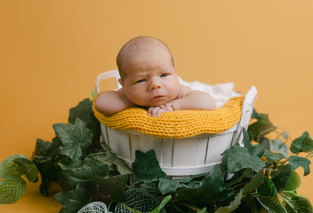 Newborn Yellow Bucket