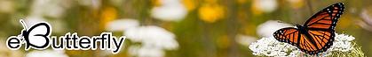 ebutterfly logo.png