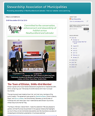 Newsletter image cropped.png
