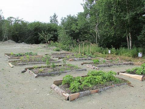 CWT community garden.JPG