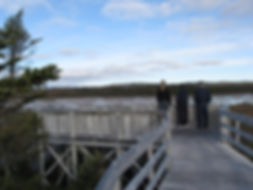Viewing Deck Winterland_Conservation Pla