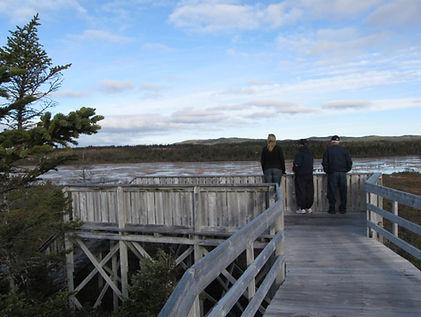 Viewing Deck Winterland_Conservation Pla
