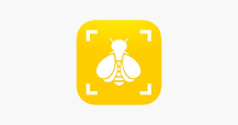 Bumble bee watch logo.png