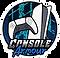 Console Armour Logo-2@3x.webp