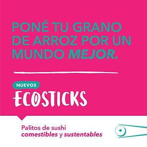ECOSTICKS_REDES-04.jpg