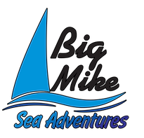 Big Mike Sea Adventures Logo Master_edit
