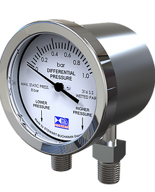Differential Pressure Gauge_edited.png