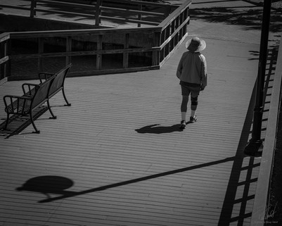 Walking the boardwalk