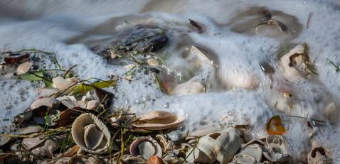 Waves on shells