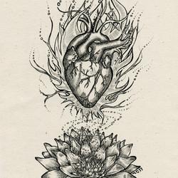 Evolve Love - Sacred Heart Lotus