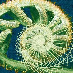spiral of creationl