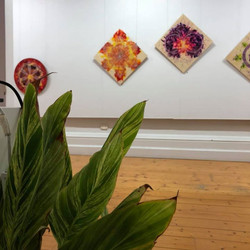 The Hidden Geometry of Flowers