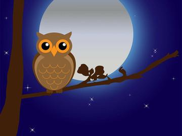 夜猫子又何妨 | Night Owls or the 5AM Club?