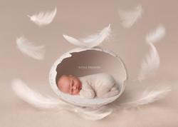 newborn photo session grays essex
