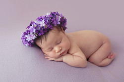 Newborn Photographer Essex 1