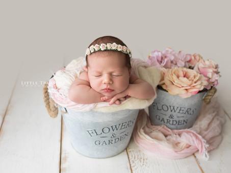 Sofia   Hornchurch Newborn Photographer