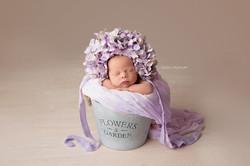 newborn photo session tilbury