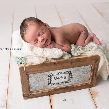 Marley | Essex Newborn Photo Session