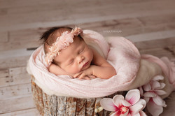 newborn photo session orsett
