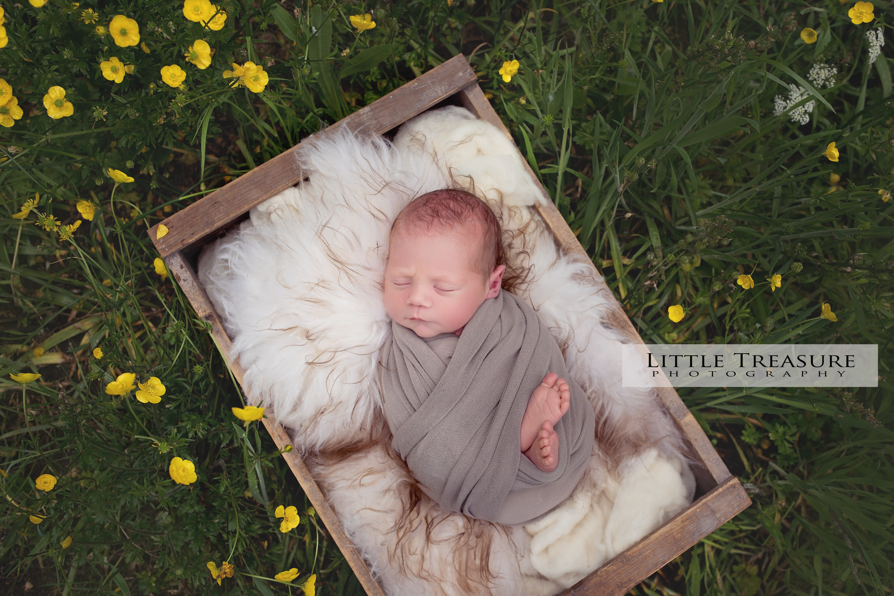 Newborn Photographer Essex