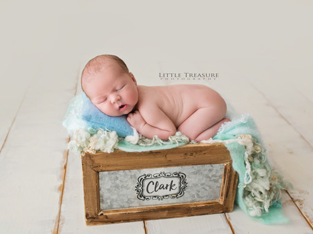 Clark | Newborn Photo Session Basildon, Essex