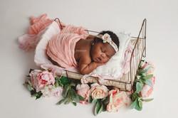 newborn photographer basildon essex