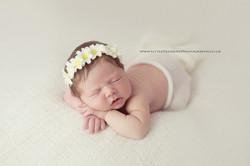 Essex Newborn Photographer 1
